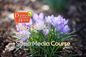 Web Design seo social media training course malaysia